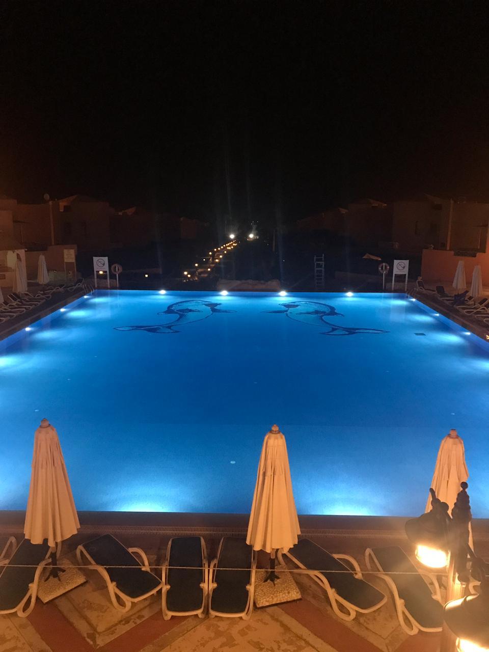 فندق توليب النرجس